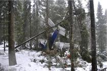 Avionul cazut in muntii Apuseni
