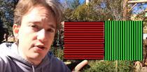 Iluzie optica - efectul McCollough