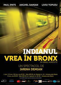 Indianul vrea in Bronx, regia Iarina Demian