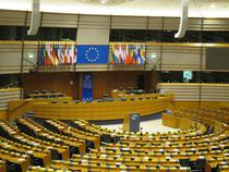 In Parlamentul Europeaan