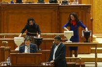 Deputati derutati de votul la patru urne pentru Elena Udrea