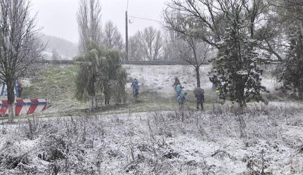 Cosit sub zăpadă la Deva (2)