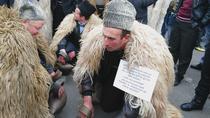 Protest al ciobanilor impotriva limitarii numarului de caini la stane