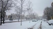 Iarna, 2016