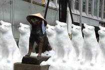 Cum arata oamenii de zapada in Japonia