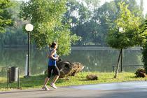 Alergare in parc