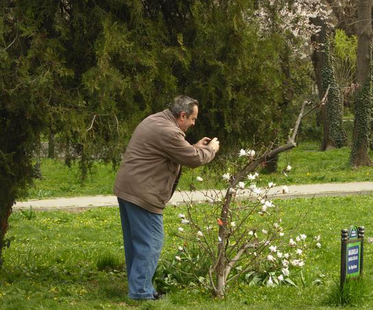 Primavara in parc (2)