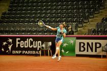 Alexandra Dulgheru, forehand plin