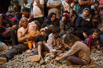 Criza refugiatilor