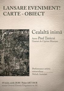 Cealalt inim, carte - obiect, poeme de Paul anicui