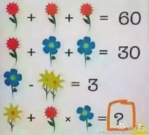 O problema de matematica cu flori