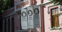 ASF cere falimentul Forte Asigurari
