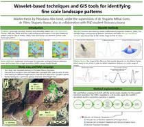 Unealta care detecteaza copacii in imaginile satelitare