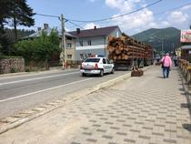 Verificarea unui transport de lemn