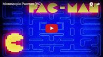 Pac-Man la nivel microscopic