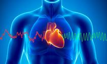 Impactul sanatatii cardiace asupra creierului