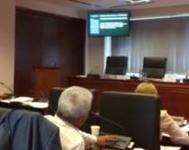 Dumitru Dobrev a votat in CGMB si pentru Nicusor Dan