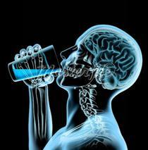 Dorinta de a consuma alcool este starnita de o parte a emisferei drepte a creierului