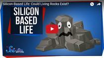 Cum ar arata o forma de viata bazata pe siliciu