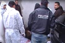 Dosar penal in cazul ursului impuscat in orasul Sibiu