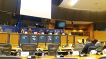 Dezbatere la Parlamentul European