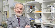 prof. Yoshinori Ohsumi, premiul Nobel pentru Medicina 2016