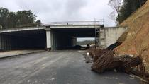 Ecoduct pe autostrada A1 Lugoj - Deva