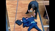 Europarlamentar UKIP, internat in spital dupa ce s-a batut cu un coleg
