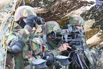 Exercitiul multinational Scorpions Fury-16