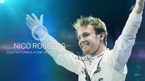 Nico Rosberg, campion in Formula 1