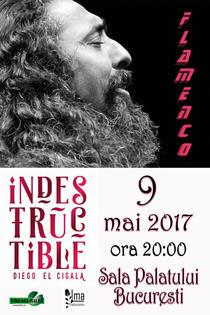 concert Diego el Cigala la Bucuresti