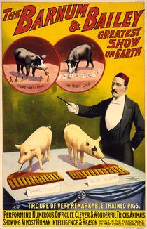 Poster pentru Circul Barnum (1898)