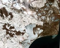 Delta Dunarii, sub gheata si zapada