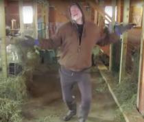 Dans in hambarul caprelor
