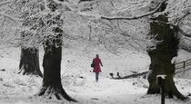 Nostalgii de iarna