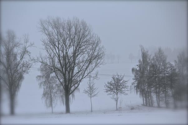 iarna (2)