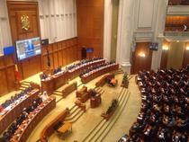 Liviu Dragnea, la votul de investire al guvernului