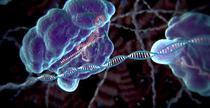 Editare genetica