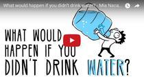 Ce se intampla cu organismul nostru daca nu bem destula apa