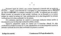 Captura de ecran din raportul Curtii de Conturi