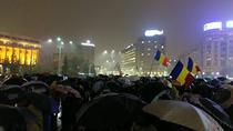 Protest Piata Victoriei 19 februarie