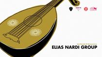Elias Nardi Group