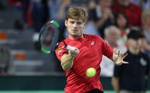 David Goffin, victorie in Cupa Davis