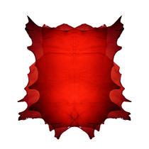 Prima piele moale transparenta din lume