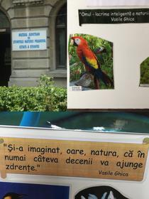 Muzeul de Stiintele Naturii Prahova