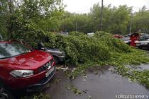 Furtuna in Moscova