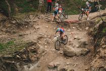 Avrig Mountain Bike