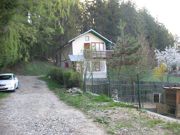Strada in Busteni (2)
