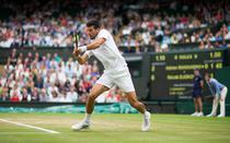 Novak Djokovic, in sferturi la Wimbledon