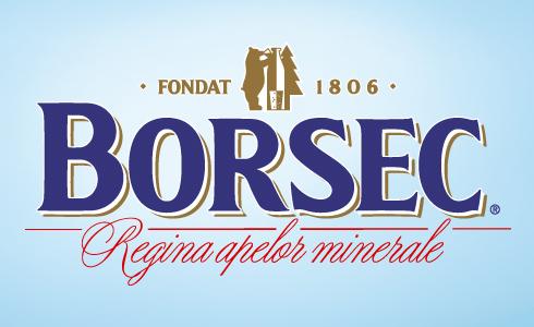 Image result for borsec apa